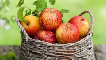 manzanas-en-canasta-3339_opt (2)